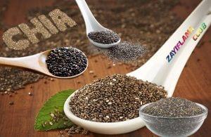 Chia Tohumu İle Zayıflama | Sağlıklı Zayıflatan Kilo Verme Kürü